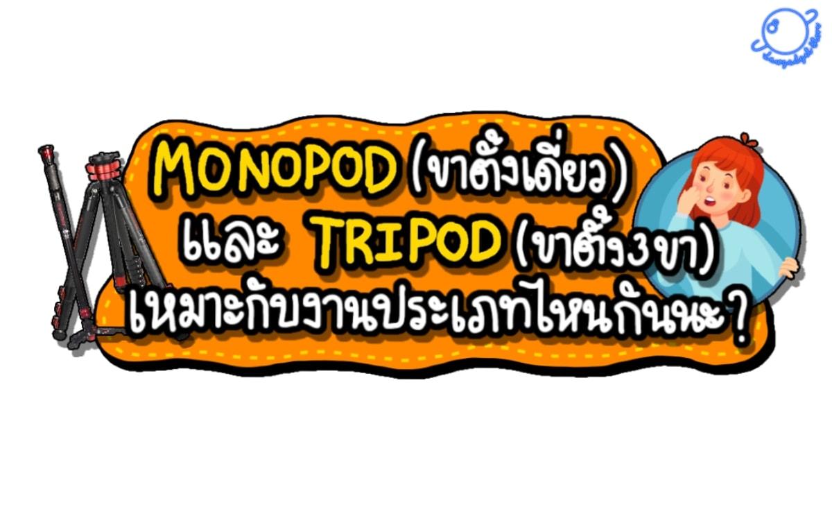 Monopod (ขาตั้งเดี่ยว) Tripod (สามขา) เหมาะกับงานประเภทไหนกันนะ ??