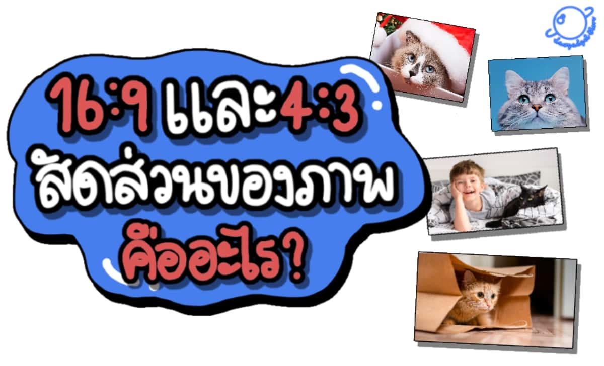16:9 และ 4:3 สัดส่วนภาพ คืออะไร ? ใช้งานยังไง ?